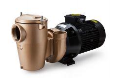 Pahlen Bronze Pumpe P85 T550, 11224