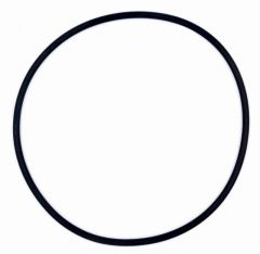 O-Ring für Standrohr (Ventil) 300919-5